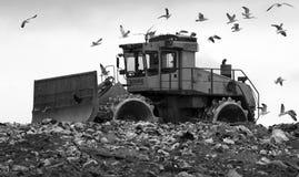 Bulldozer del materiale di riporto in mono immagine stock libera da diritti