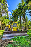 Bulldozer in the forest Stock Image