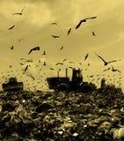 The bulldozer on a garbage dump Stock Photos
