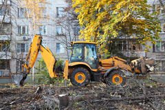 Bulldozer removes felled trees Stock Photography
