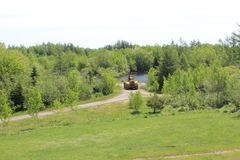 A bulldozer by a small pond in a quarry at the end of a dirt path and a green lawn in the forest on Cape Breton Island. A rural scene from Cape Breton Island Stock Image