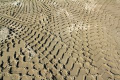 Bulldozer track in sand Stock Image