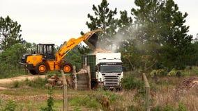 Bulldozerpäfyllningssmuts in i en lastbil lager videofilmer
