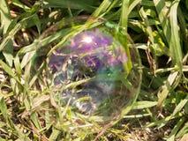 Bulle de savon sur la pelouse d'herbe Photographie stock