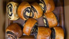 Bulle med vallmofrö i marknad Produkt för bageri för bagel för nytt bröd traditionell eller bageribegrepp arkivfoton
