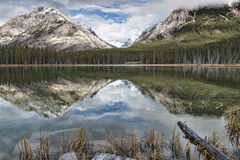 Buller Pond Reflections. Reflective Buller Pond in the Canadian Rockies, Alberta, Canada Royalty Free Stock Photography