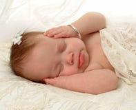 bullersam sömn Arkivbild