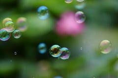 bulles Photos libres de droits