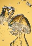 Bulles d'air dans l'eau Image stock