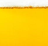 Bulles de bière Photos stock