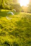 Bulles de savon flottant sur une pelouse verte Photographie stock libre de droits