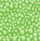Bulles vertes de marijuana Photo stock