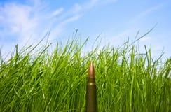 Bullet, grass and sky Stock Photos