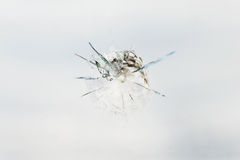 Bullet hole in the glass. Round bullet hole in the glass with radial cracks Stock Photos