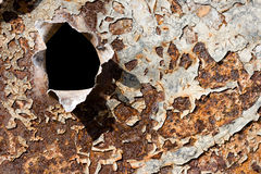 Bullet Hole On The Rusty Iron Stock Images