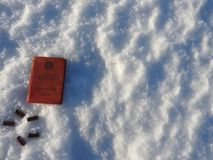 Bullets 9 mm, on white snow. stock photos