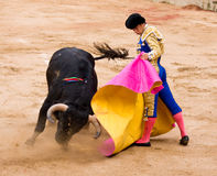 Bullfight. BARCELONA - JUNE 6: El Juli in action during a corrida de toros or bullfight, typical Spanish tradition where a torero or bullfighter kills a bull on Stock Image