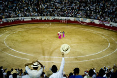 bullfight Royaltyfri Bild