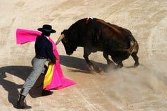 bullfight Obraz Stock