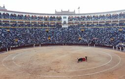 Bullfight arena Stock Photos