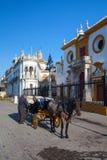 Bullfight arena, Plac De Toros przy Sevilla Obraz Stock
