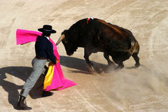 Bullfight. In Camargue shot with a 200mm lens standing fairly close to the action Stock Image