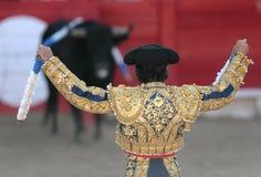 Bullfight 011. Corrida moment, during a bullfight evening in Spain. toros Royalty Free Stock Photos