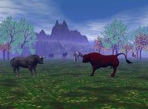 Bullfight della prateria Immagine Stock