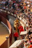 Bullfight in Madrid, Spain Royalty Free Stock Photography