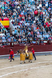 Bullfight in Madrid, Spain Royalty Free Stock Image