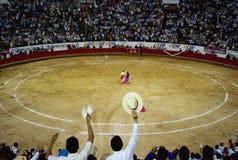 Bullfight. At Plaza de Toros Nuevo Progreso, Guadalajara, Mexico Royalty Free Stock Photography