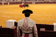 Bullfighter Stock Images