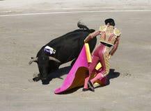 bullfighter stock afbeelding