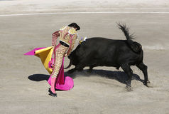 bullfighter royalty-vrije stock afbeelding