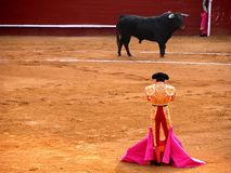 Bullfighter and bull in a standoff royalty free stock photos