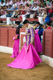 Bullfighter concentrated with the capote Royalty Free Stock Image