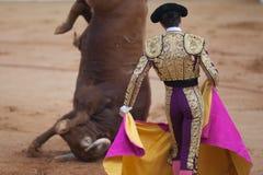 Bullfighter e touro Foto de Stock