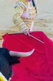 Bullfighter giving a pass to the bull with his cape Royalty Free Stock Images