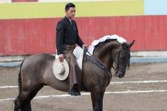 Bullfighter on horseback Royalty Free Stock Photography