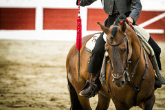 Bullfighter on horseback spanish Royalty Free Stock Image