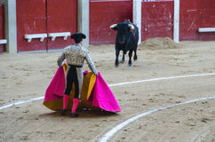 Bullfighter waiting in front the bull Stock Photo