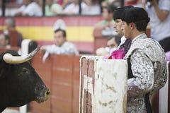 Bullfighters за убежищем перед взглядом храброго быка Стоковое Изображение RF