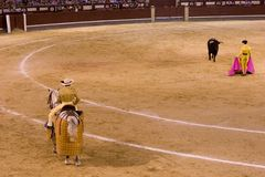 bullfighting Arkivbilder