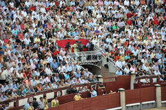 Bullfighting festival Stock Image