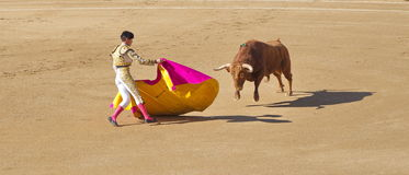 Bullfighting Stock Photo