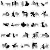 Bullfighting sylwetki w szarość i czerni Zdjęcie Stock