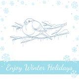 Bullfinch στο χειμερινό κλάδο επίσης corel σύρετε το διάνυσμα απεικόνισης Στοκ εικόνα με δικαίωμα ελεύθερης χρήσης