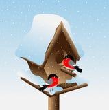 Bullfinch δύο στο birdhouse σε ένα υπόβαθρο του μπλε ουρανού Στοκ Εικόνες