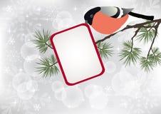 Bullfinch auf dem Zweig. Lizenzfreies Stockbild