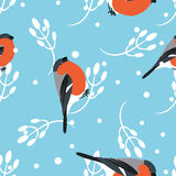 Bullfinch and berberry branch seamless pattern. Vector background Stock Image
